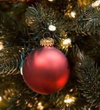 Deep Red Christmas Ornament Stock Images