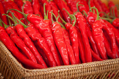 Deep red hot chili in displa Stock Photography
