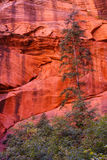 Deep red and orange cliffs Royalty Free Stock Image