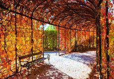 Deep red plant tunnel Stock Photo
