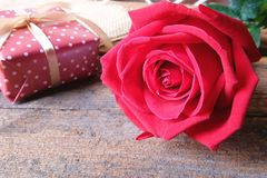 Deep red rose on wooden floor. Backdrop for Valentine's day concept royalty free stock photos
