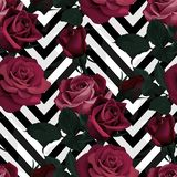 Deep red roses vector seamless pattern. Dark flowers on black and white chevron background, flowered texture. S royalty free illustration
