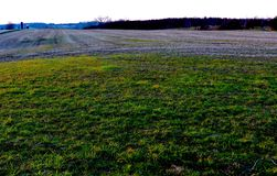Deep, Rich Green Grass Set Against Rolling Farmland Creates Dramatic Sunset Vista stock image