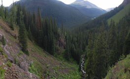 Deep river gorge in Colorado Rockies Royalty Free Stock Photography