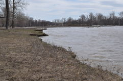 Deep river and the river bank Stock Images