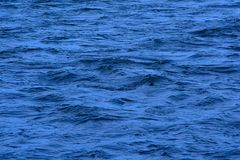 Deep blue  rippling water surface background. Deep royal blue  rippling water surface background royalty free stock image