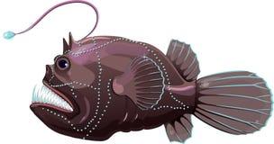 Deep sea anglerfish Stock Photo