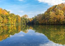 Deep sea in autumn. With yellow maple leaves in water Royalty Free Stock Photo