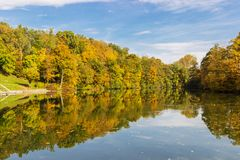 Deep sea in autumn. With yellow maple leaves in water Stock Image