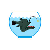 Deep sea fish in  Aquarium. Terrible  anglerfish in captivity. P Royalty Free Stock Photo