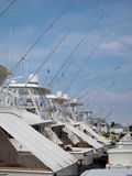 Deep Sea Fishing Charter Boats. A row of deep sea fishing charter boats, lined up at the marina, on a sunny afternoon Stock Photography