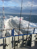 Deep sea fishing in the gulf stream. Almost to are destination Stock Photo