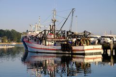 Deep Sea Fishing Trawler, Sydney Harbour, Australia. A deep sea fishing trawler, working boat, docked or moored in Blackwattle Bay, Sydney Harbour, Pyrmont Royalty Free Stock Image