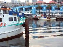 Deep Sea Fishing Trawlers Moored at Sydney Fish Markets, Australia. Deep sea fishing trawlers docked at Sydney Fish Markets, Blackwattle Bay, Pyrmont, Sydney Royalty Free Stock Photos