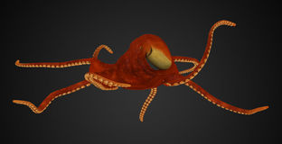Deep sea Squid Royalty Free Stock Photography
