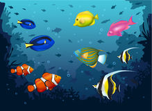Deep Sea with Tropical Fishes Royalty Free Stock Images