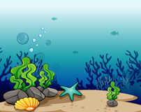 Deep sea Stock Photo