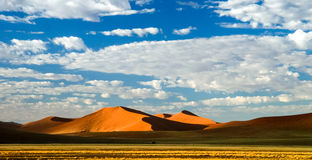 Deep shadows on Sossusvlei dunes at sunrise, Namib desert, Namibia Royalty Free Stock Photography