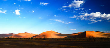 Deep shadows on Sossusvlei dunes at sunrise in Namib desert Royalty Free Stock Images