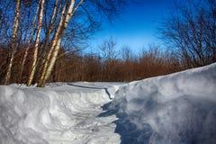 Deep Snow Path. Path flattened through deep snow Stock Photos