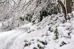 Deep Snow in Portland Stock Photography