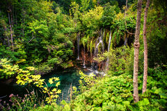 Deep tropical forest waterfall, outdoor beautiful lanscape with water, pond and trees. Stock Photography