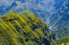Deep Valley On Madeira Island, Portugal Royalty Free Stock Photos
