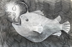 Deep water fish sketch. Hand drawn pencil sketch of a deepwater fish luring it's prey with a light emitting organ Stock Photos
