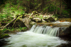 Deep wood. Cascading waterfall in deep forest Stock Photos
