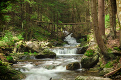 Deep wood. Cascading waterfall in deep forest Stock Photo