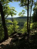 Deep woods cliff. Amazing view among the deep forest Royalty Free Stock Images