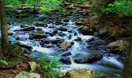 Deep Woods Stream. Rocky deep woods stream, deep in the heart of the Ozarks Stock Photo