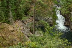 deepblue pool and green forest with waterfalling over stones stock images