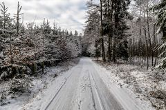 A deeper path into the forest in winter time. Deeper path into the forest in winter time Stock Images