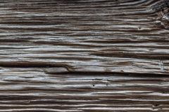 Deeply weathered grain in old exterior wood plank. Horizontal aspect Royalty Free Stock Photos