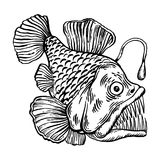 Deepwater fish with lighter engraving vector Royalty Free Stock Image