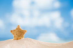 Deepwater rare starfish with ocean, beach and seascape Royalty Free Stock Photography