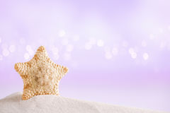 Deepwater rare starfish on white sand with festive glitter backg Royalty Free Stock Photography