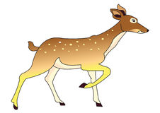 Deer. Illustration of deer drawing isolated on white background royalty free illustration