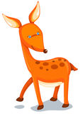 Deer. Illustration of isolated  small deer on white background Stock Photo
