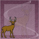Deer Royalty Free Stock Photography
