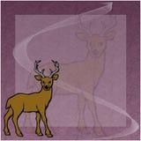 Deer. Lovely illustration of a deer stock illustration