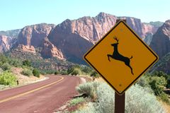 Deer ahead road sign Stock Image
