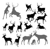 Deer animal silhouettes. Silhouette Deer including fawn, doe bucks and stag. Also two stags fighting ans a family group set Royalty Free Stock Photo