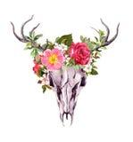 Deer animal skull with flowers. Watercolor Stock Photo