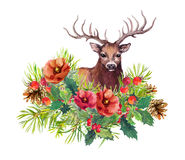 Deer animal, winter flowers, fir tree, mistletoe. Watercolor for christmas card. Deer animal, winter flowers, fir tree, mistletoe. Watercolor for new year or royalty free stock images