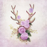 Deer antlers with flowers Royalty Free Stock Photography