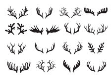 Deer antlers set isolated on white background. Royalty Free Stock Photo