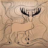 Deer antlers Stock Images