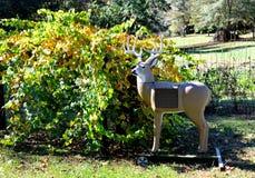 Deer archery target Stock Photos
